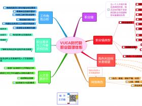 VUCA时代的职业管理体系