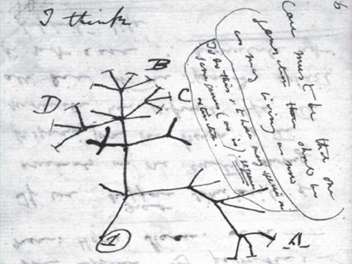 思维导图是怎样诞生的