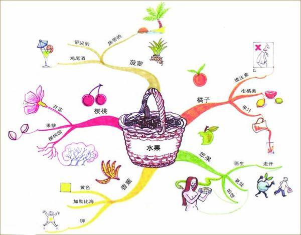 小学语文《五彩的水果》读后感